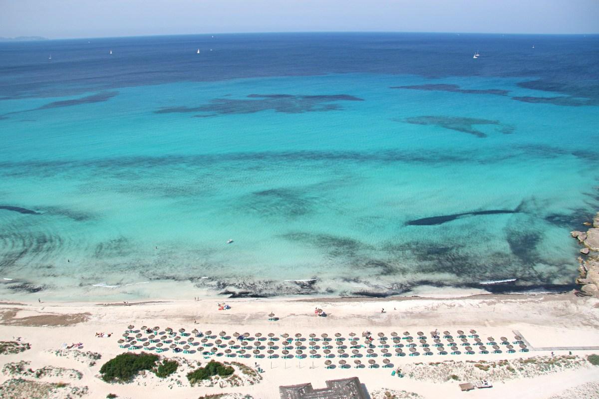 Charter Mallorca - Hotel Calma 3*